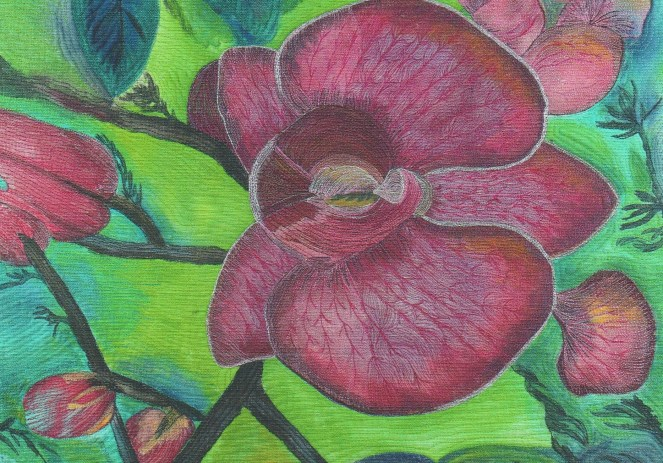 Canvas Orchids by Janet Herman Art