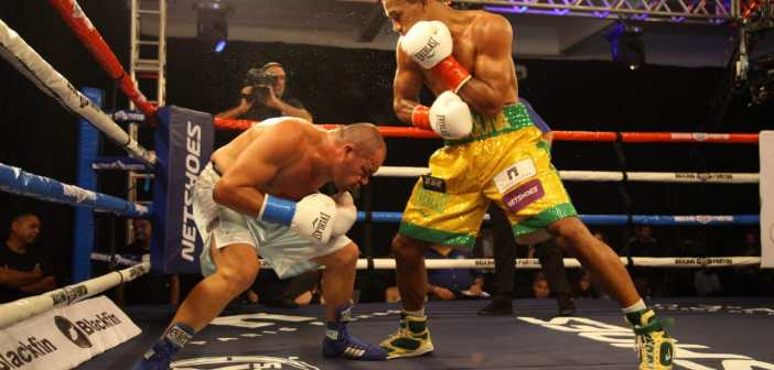 Medalhistas olímpicos confirmam favoritismo no Boxing For You
