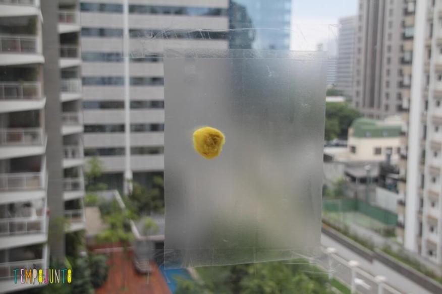 Atividade com Papel Contact - pompom amarelo
