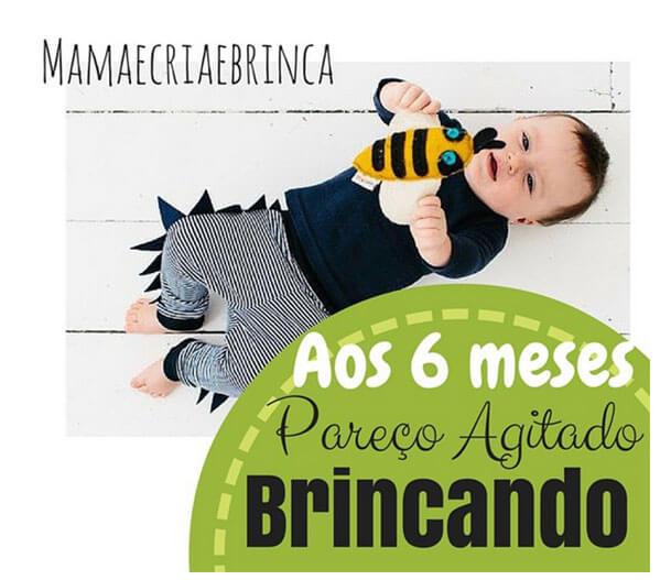 @mamaecriaebrinca - apos 6 meses