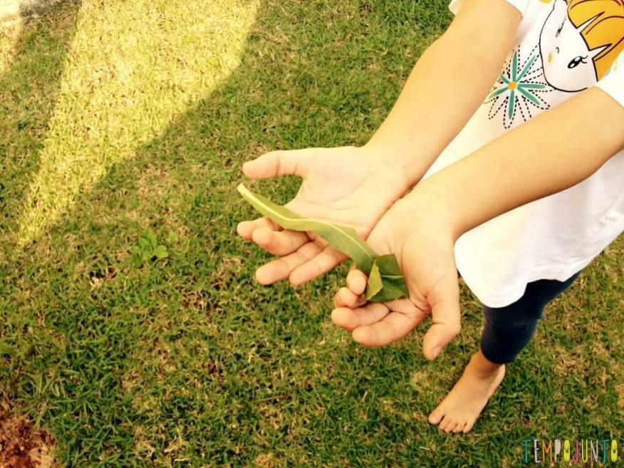 Se divertir com os filhos agarrando objetos flutuantes da natureza - sofia com folhas