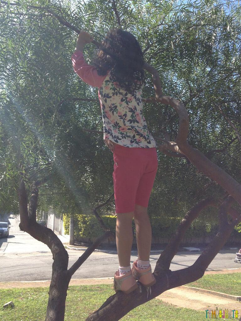 Espaços livres em parques e praças podem ser aproveitados para brincar - sofia na arvore