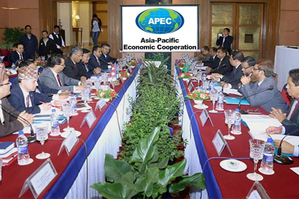 Indonesia Decided to Join an Economic Cooperation