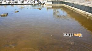 acqua sporca formia (2)