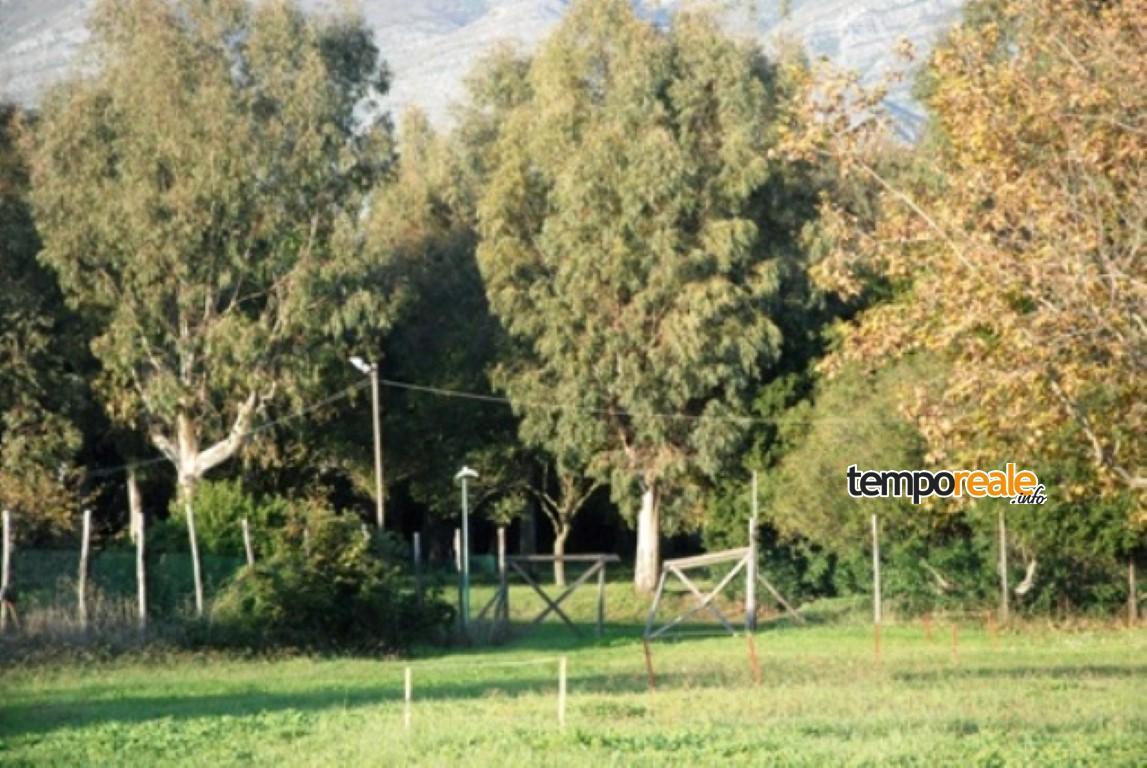 Parco De Curtis