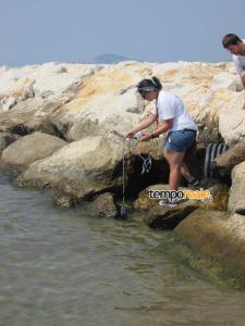 Prelievo nella spiaggia presso la foce del Rio Santacroce a Formia