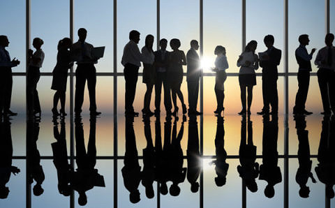 Silhouette of business colleagues working