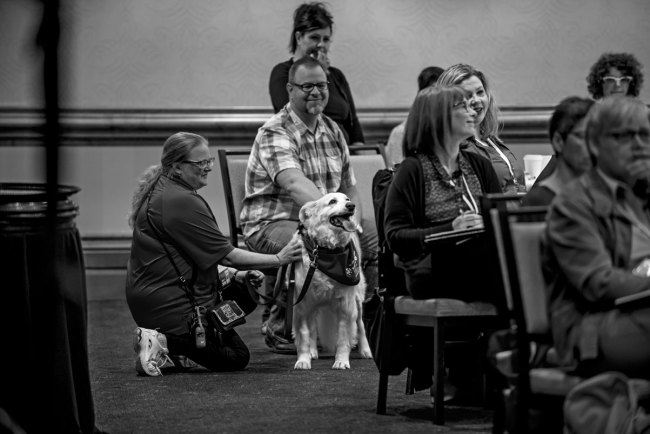 CARE4YOU-Halifax2018-therapydog
