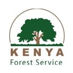 Kenya Forest Service Tender 2020