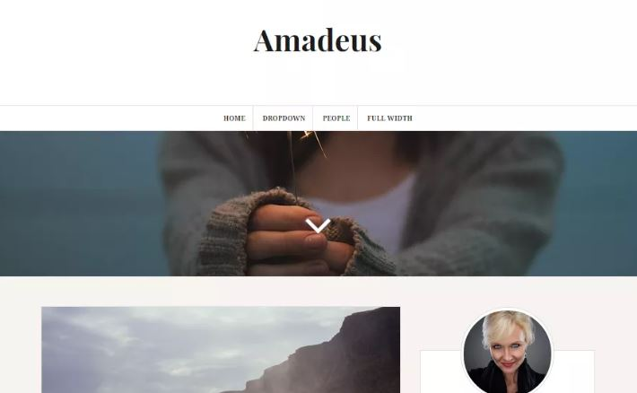 amadeus wordpress theme