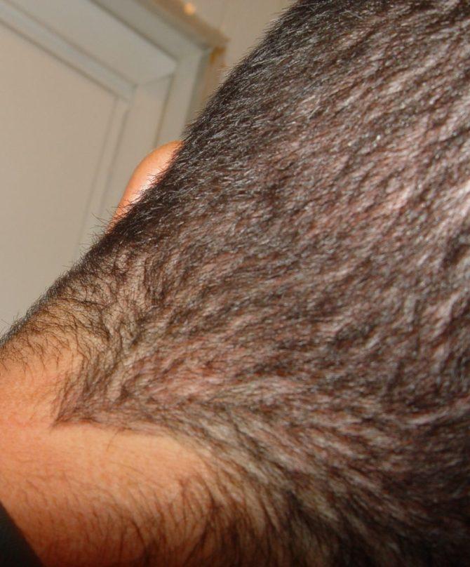 http://www.tenerpelo.com/rr21º dia, Sony 01-12-11 (14)