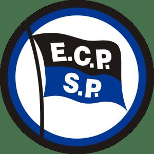 ESPORTE CLUBE PINHEIROS É O GRANDE CAMPEÃO ESTADUAL 2017