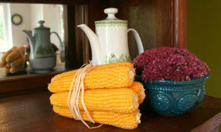Paieškokite namuose įdomių formų ir raštų indų. Naudokite juos namams papuošti.