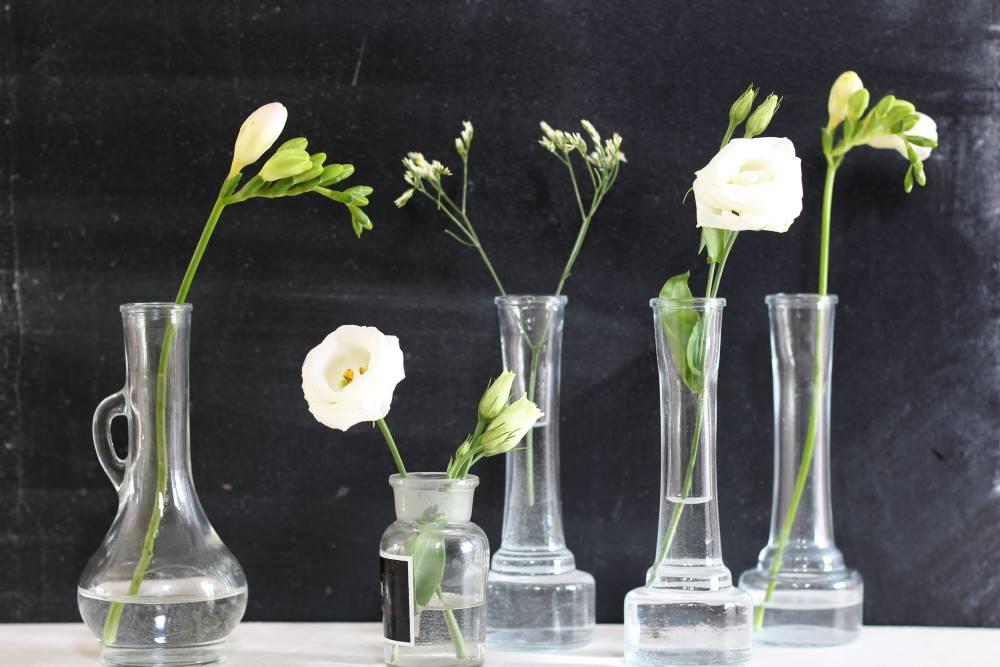 gėlės namuose