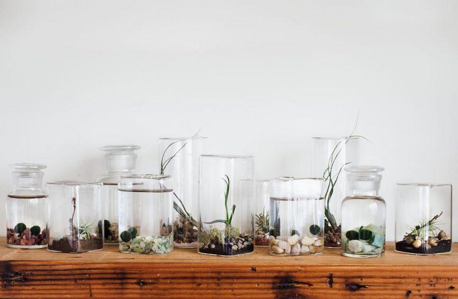 akvariumo