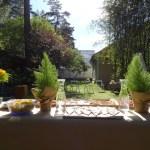 Trisdešimtojo gimtadienio išvakarių šventė sode