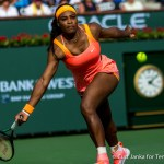 Serena and Venus Williams, CoCo Vandeweghe to Lead US Fed Cup Team Against the Netherlands