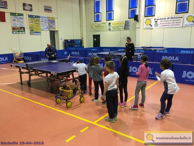 Tennistavolo Norbello 29-04-2016 - 6