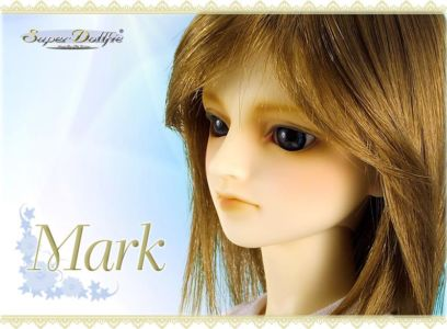 Mark-08renewal02