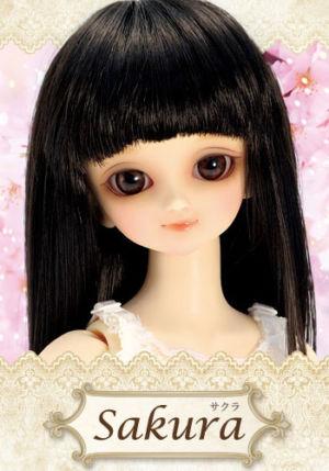 Sakura-2010renewal01