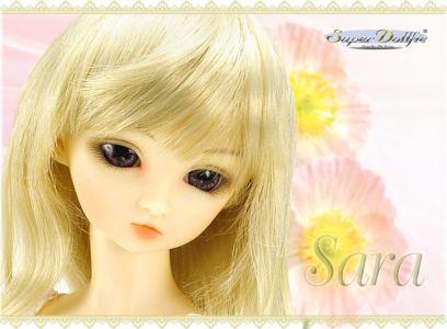 Sara-08renewal02