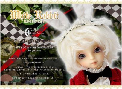 Whiterabbit02
