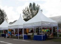 gazebo tent for funfair
