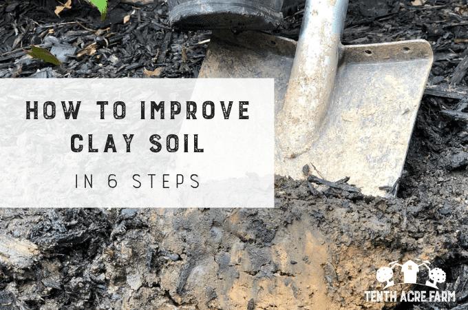 """So verbessern Sie den Lehmboden in 6 Schritten: Schwerer Lehmboden kann frustrierend sein. Befolgen Sie diesen 6-Stufen-Plan, um den Boden zu verbessern, damit Sie problemlos im Garten arbeiten und gedeihende Pflanzen anbauen können. """"Width ="""" 680 """"height ="""" 450 """"srcset ="""" https://www.tenthacrefarm.com/wp-content/uploads /Wie-zu-verbessern-Ton-Boden-geeignet.png 680w, https://www.tenthacrefarm.com/wp-content/uploads/Wie-zu-verbessern-Ton-Boden-geeignet-300x199.png 300w """"-Größen = (max-width: 680px) 100vw, 680px"""