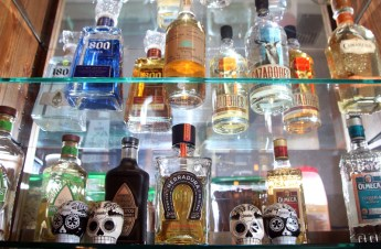 MARIO BARTEL The bar at El Santo is a showcase for dozens of varieties of tequilla.