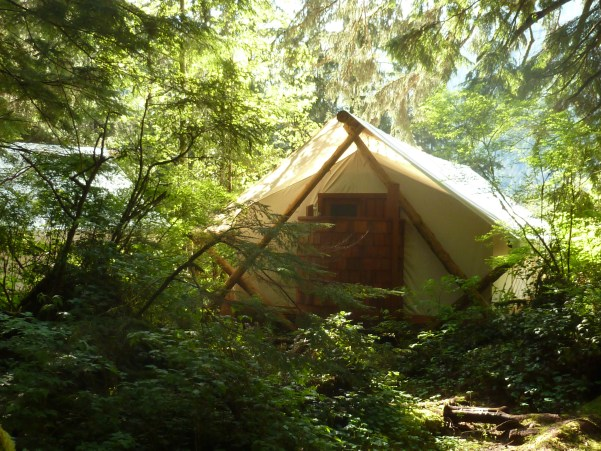 prospector style tent in the trees