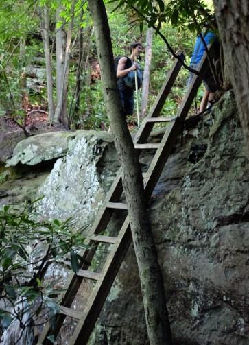 Ladder at Summersville Lake