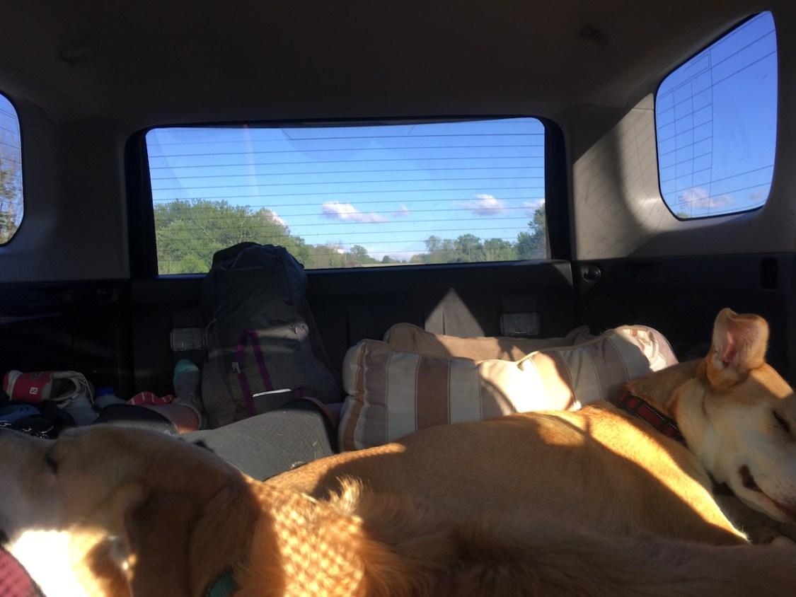 4Runner Road Trip