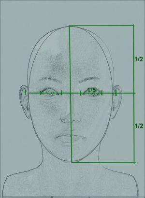 Proporciones cabeza- Tenttoi