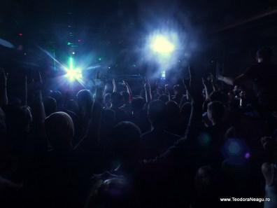 Transilvania Music Event Cluj Arena 2013 Day 1 (21)