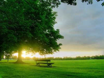 ws_bench_in_sunlight_1600x1200