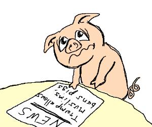 babi-itu-halal