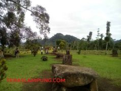 Situs Megalitik Batu Brak di Pekon (Desa) Purawiwitan, Kecamatan Kebu Tebu, Lampung Barat(Foto: Teraslampung.com/Oyos Saroso HN)