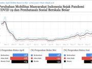 grafik peningkatan mobilitas