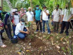 JBEL dan Warga Tanam 700 Pohon di Pekon Teratas Kotaagung