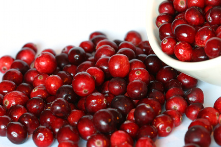 Image source: https://i1.wp.com/www.terawarner.com/hhh/istockimages/cranberries_2.jpg