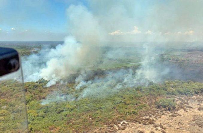 Operação Pantanal amplia ações e reforça combate aos incêndios em MT