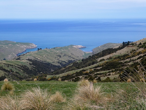 The bays of the South Banks Peninsula. Canterbury, NZ