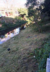 Limpeza margem rio 6a_Divulgação