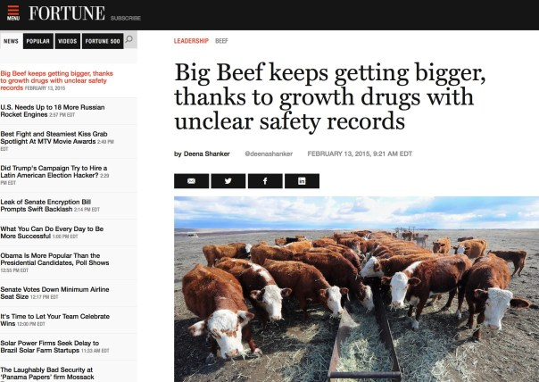 "Instead of abandoning such drugs, several beef producers are simply switching from one controversial growth promoter to another. When it comes to cattle, size certainly does matter. But how big is too big? And at what cost? The beef industry has come to rely on growth-inducing drugs to bulk up cattle before slaughter. But the consequences of using such drugs are a concerning unknown. And in a major move away from one particular growth drug, feedlot operators are refusing to participate in a new, large-scale study of Zilmax, Merck's branded growth promotant for cattle, NPR reported last month. Cargill, Tyson, JBS, and National Beef — which together produce more than 80% of the country's beef — have barred cattle raised with the FDA-approved feed additive, and operators do not want to end up with unsellable livestock. But instead of abandoning such drugs, several producers are simply using another controversial growth promoting drug instead, called ractopamine. Since becoming commercially available in the U.S. in 2007, Zilmax helped feedlot operators raise bigger cattle on less food, what is known as improving ""feed efficiency."" Used for 20 days before slaughter (plus a three-day withdrawal period), cattle could gain an extra 24 to 33 pounds, netting operators an estimated $15.69 more per heifer and an additional $24.24 per steer, according to a 2011 study published in the Journal of Agricultural and Resource Economics. Despite multiple reports (including from the President of Certified Angus Beef and within the FDA application) that beef from animals raised with Zilmax loses its fatty marbling, and therefore doesn't taste as good, the drug became a mainstay of the beef industry. In 2012, Merck's annual sales of the drug in the U.S. and Canada were roughly $160 million. But in August 2013, citing animal health issues, Tyson — the largest meat processor in the country — announced that it would stop accepting cattle raised with Zilmax by the following month. Nine days later, Merck announced that it would voluntarily withdraw the drug from the market. In December 2013, Reuters uncovered reports that found some cattle fed Zilmax were losing their hooves, rendering them unable to walk. In a March 2014 report from Texas Tech University and Kansas State University looking at a dataset of 722,704 cattle across nine feedlots, researchers found ""the incidence of death was 80% greater in animals administered [zilpaterol, the active ingredient in Zilmax] than the comparative control cohort."""