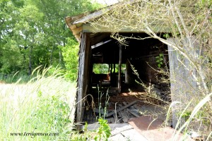 old barn Lauderdale County Alabama
