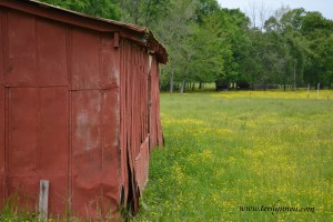 old red barn rural Tennessee