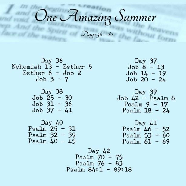 One Amazing Summer #B90Days Readings www.terilynneunderwood.com