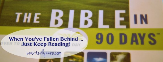 Behind in Bible in 90 Days Reading www.terilynneunderwood.com