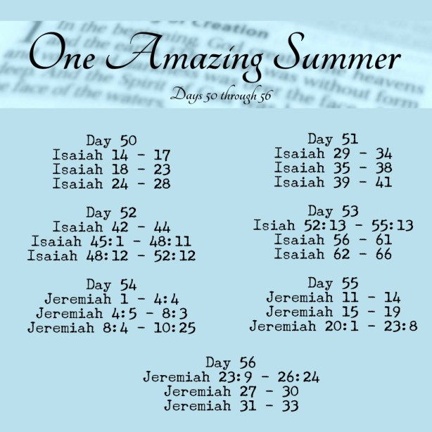 One Amazing Summer Bible in 90 Days readings www.terilynneunderwood.com