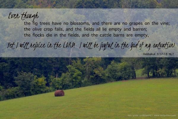 Habbakuk 3:17-18 www.terilynneunderwood.com